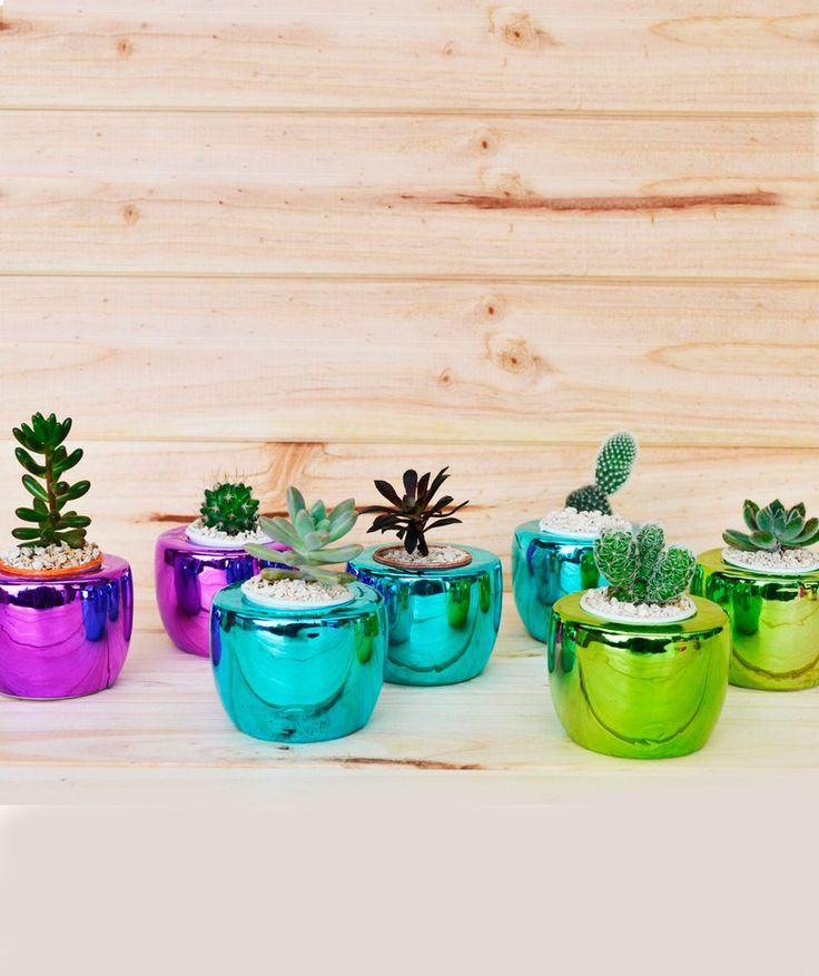 Iris Metallics - Matera, disponible en 3 colores. $16.900 COP c/u. Compra aquí --> https://www.dekosas.com/habibi-plantas