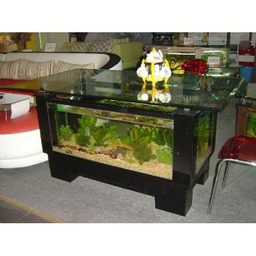 Black Coffee Table Fish Tank: 55 Best Images About The Crazy Fish Lady.... :) On