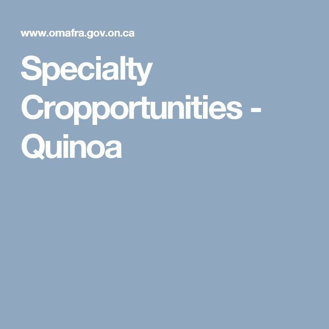 Specialty Cropportunities - Quinoa
