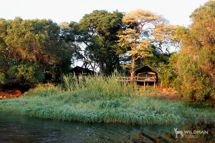 Mutemwa Lodge, Western Zambia. A unique and private tiger fishing lodge on the Upper Zambezi River with excellent accommodation, great guides and wonderful birding. #africanlodges #zambia #travel #africantravel #tigerfishing #africa