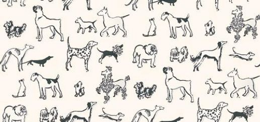 Best in Show (839-T-5102) - Thibaut Wallpapers - Sketches of different dogs, dalmation, bulldog, terrier and poodles – in black on white. Wide width Vinyl Coated Pre-pasted but we would recommend pasting. Please request sample for true colour match.Delivery for this American wallcovering is 7-10 worki