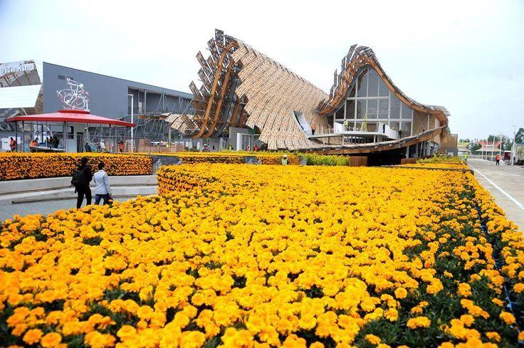 Padiglioni Expo 2015