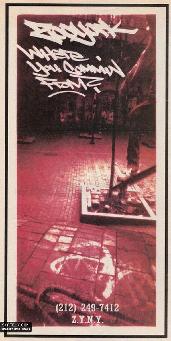 zooyork1993