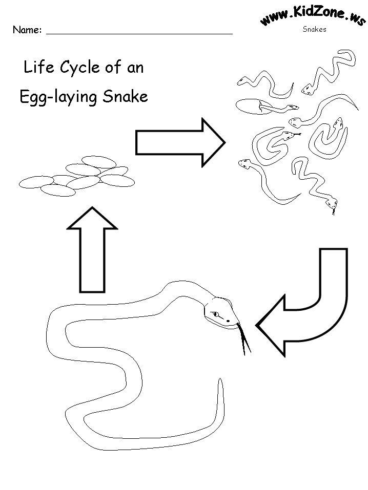 Pre School Lesson Plans Snakes
