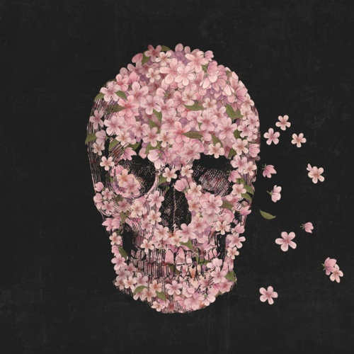 Flower skullTerry O'Neil, Cherries Blossoms, Pink Flower, Terry Fans, Art Prints, Flower Skull, Blossoms Trees, Flower Bombs, Skull Art