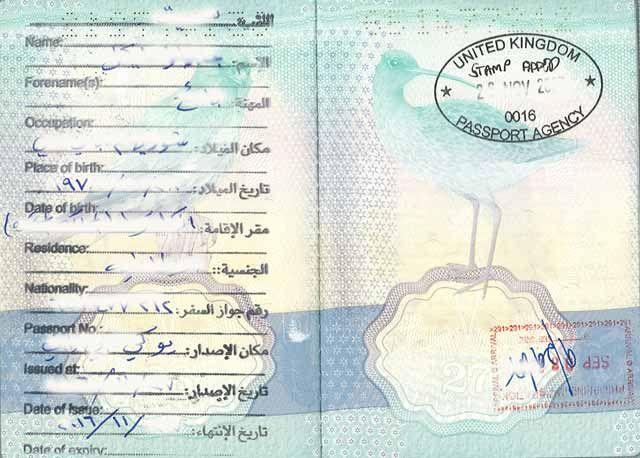 Best 25+ International passport ideas on Pinterest The - passport template