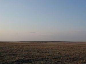 La estepa (del ruso: степь, step, AFI: sʲtʲepʲ) es un bioma que comprende un territorio llano, de vegetación herbácea, propio de climas extremos y escasas precipitaciones. También se lo asocia a un desierto frío, para establecer una diferencia con los desiertos tórridos. Estas regiones se encuentran lejos del mar, con clima árido continental