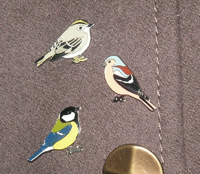 I went out to the post office in my local village yesterday afternoon and found these gorgeous rspb pin badges on the counter