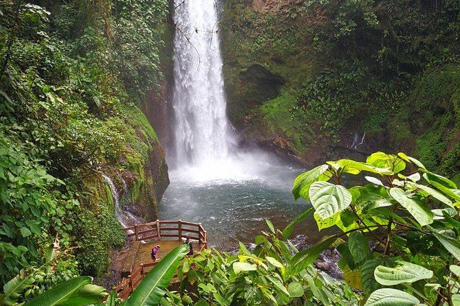89f54faffc6fed320e6a134b11fe17f4 - La Paz Waterfall Gardens Tour From San Jose