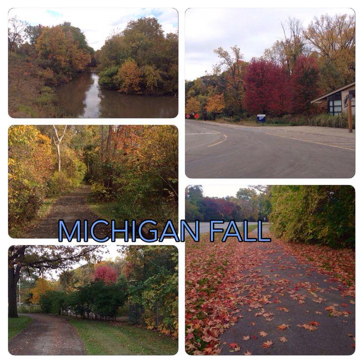 Automn colors in Michigan, USA