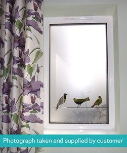 Best 25 window film ideas on pinterest bathroom window for What kind of paint to use on kitchen cabinets for wire bird wall art