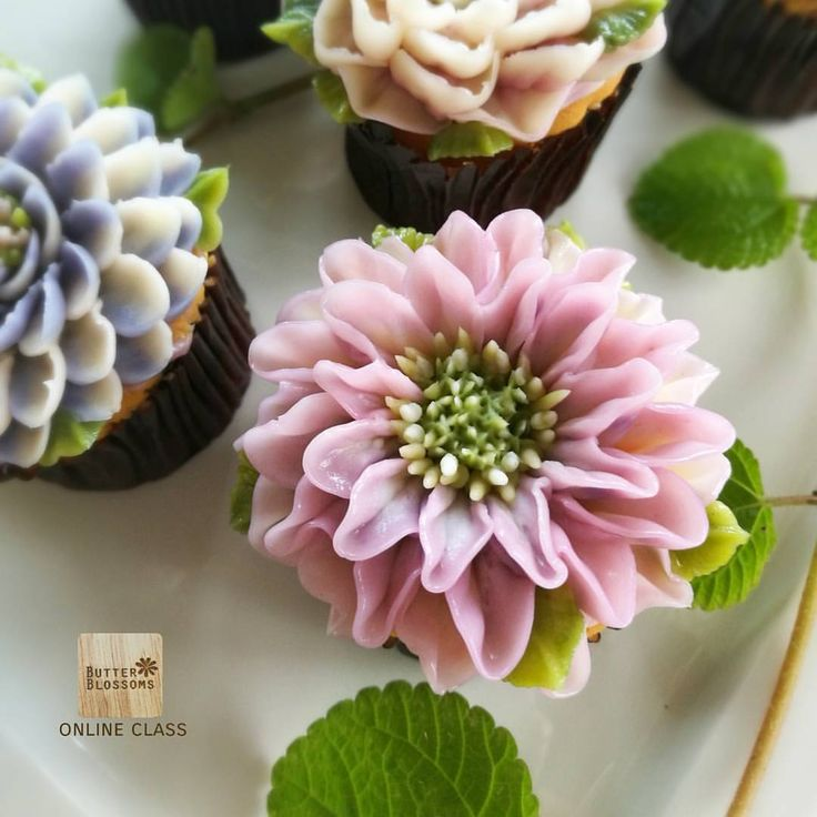Dahlia cupcake #dahlia Flowers cupcakes How to pipe flower direct on cupcake In online class with this collection. Butter cream flower art. For info/ jivi5096@hotmail.com #butter #butterblossom #butterblossoms #onlineclass #flowers #flowercake #flowercakeclass #pipingclass #cake #cakes #cakeinspiration #cakeflowers #bakery #white #whiteflower #wreath #wreathcake #formom #mother #motherday #forbosswomen #forgirl #happybirthday #nature #love #thailand #bangkok #wreath #wreathcake…