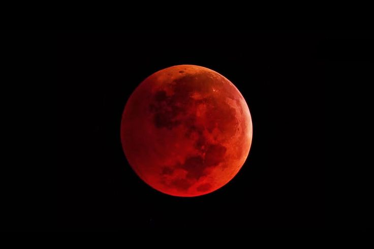 Blood Moon Growing: Proper to Get the whole Lunar New moon ~ World news now