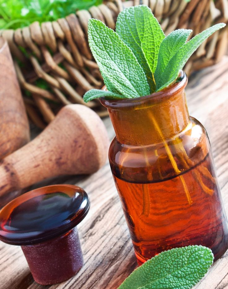 20 Amazing Benefits Of Sage Herb For Skin, Hair And Health http://www.shivohamyoga.nl/ #health #food #ayurvedic