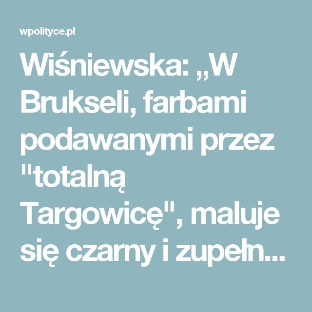 """Wiśniewska: """"W Brukseli, farbami podawanymi przez """"totalną Targowicę"""", maluje się czarny i zupełnie nieprawdziwy obraz Polski""""__"""