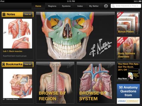 136 best Anatomy - Physiology images on Pinterest   Human anatomy ...
