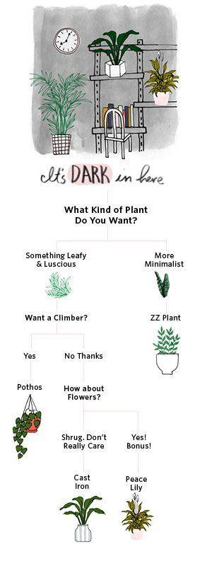 25 best ideas about bedroom plants on pinterest plants in bedroom best plants for bedroom. Black Bedroom Furniture Sets. Home Design Ideas