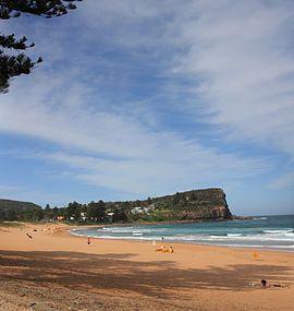 Avalon beach in australia