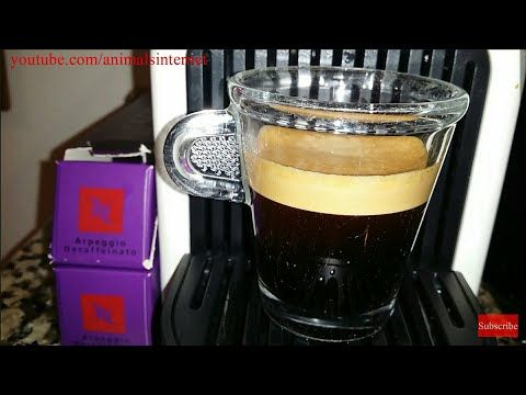 (English) Nespresso Arpeggio gourmet coffee capsules on Krups (& Delonghi) Inissia machine. _ (Português) Cápsulas de café gourmet Nespresso Arpeggio numa máquina Krups (& Delonghi) Inissia. _ (Français) Capsules de café gourmet Nespresso Arpeggio dans une machine cafètiere Krups (& Delonghi) Inissia. _ (Español) Cápsulas de café gourmet Nespresso Arpeggio en una máquina Krups (& Delonghi) Inissia.