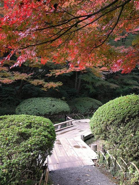 Meiji Shrine Inner Garden, Tokyo, Japan.  Photo: Daren Krappe via Flickr