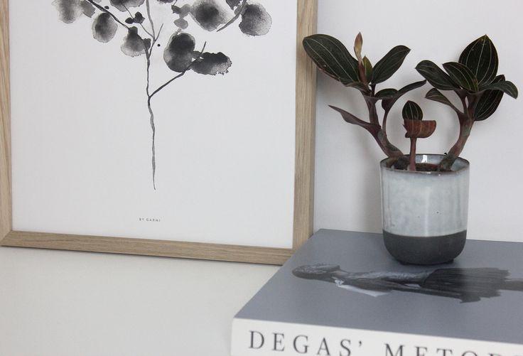 Cocos Plant print By Garmi // Nordic // Interior // Botanic
