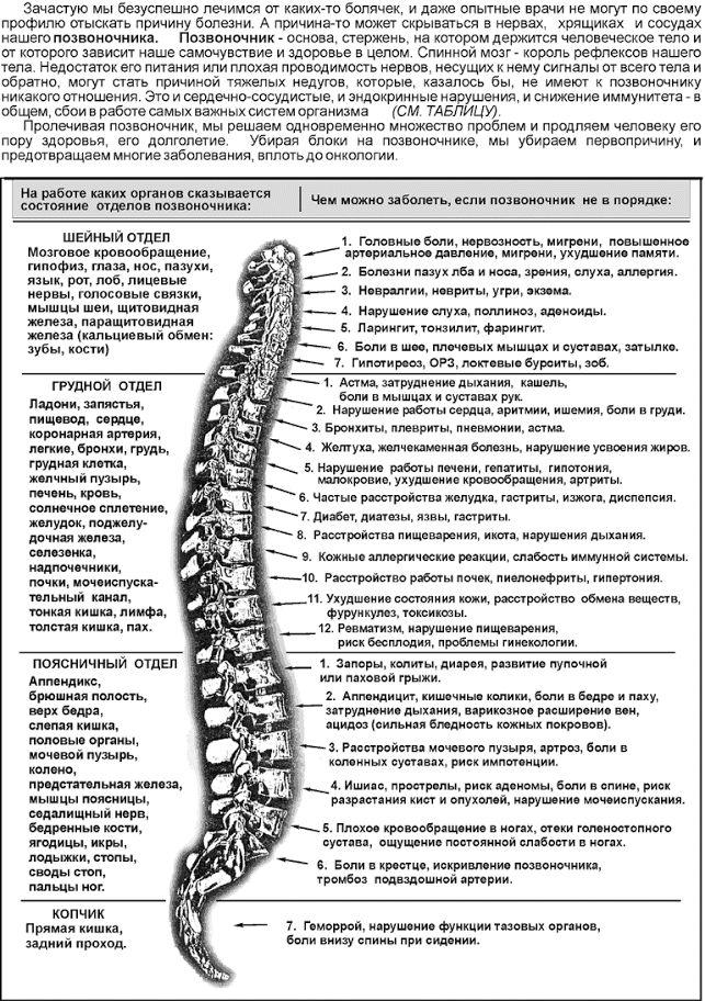 Юмейхо терапия    Узнайте больше на: http://goio.ru/yumejxo-terapiya/