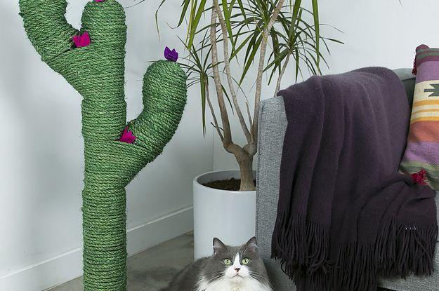 Selbstgemachter Kratzbaum-Kaktus