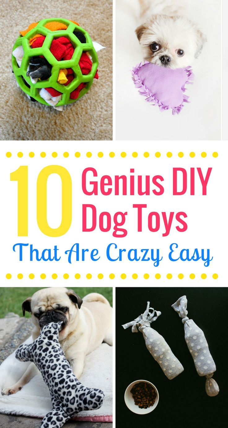 10 Genius Diy Dog Toys That Are Crazy Easy Diy Dog Toys Best