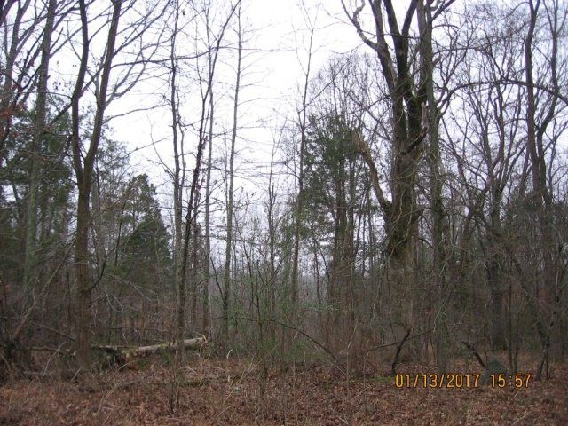 68 acres surveyed off a larger parcel. Secluded building spots with a good place for a pond. Great hunting with plenty of deer. Close to town and the 1000 acre lake. Property is in Greenbelt program. Survey on file. City water available in Huntingdon TN