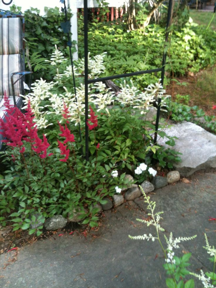 99 best Moments From My Garden images on Pinterest | Garden ...