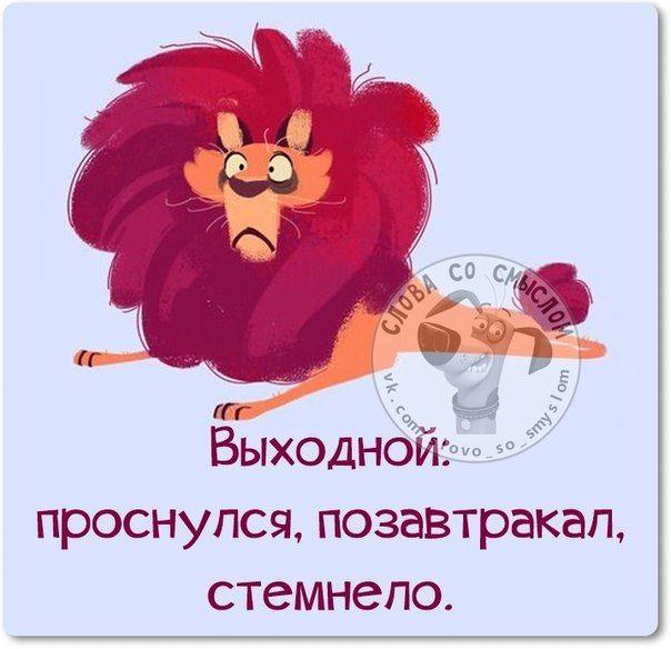 http://cs618319.vk.me/v618319573/1b60a/9sk8gcusMpY.jpg