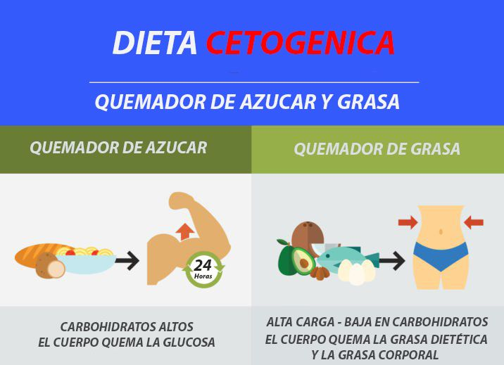 Dieta Cetogenica Beneficios Perdida De Peso Todo Lo Que Deberia Saber Dieta Cetogenica Cetogenica Dieta