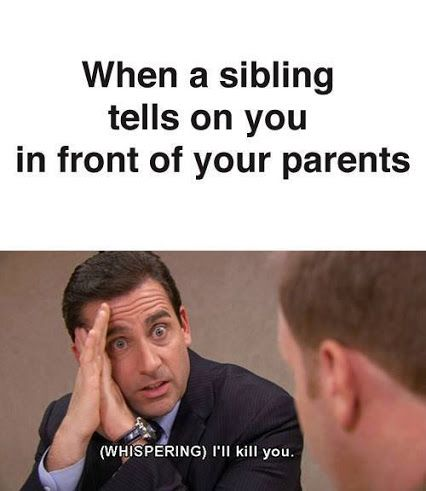 Funny Memes about Siblings