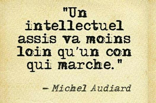 """Un intellectuel assis va moins loin qu'un con qui marche."" Michel Audiard"