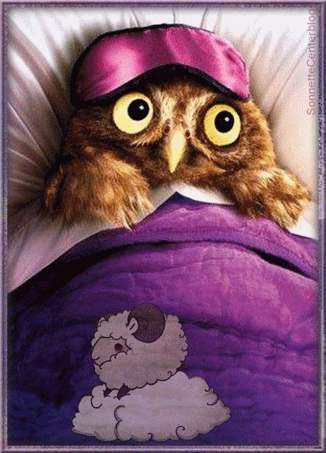 Доброй ночи картинки с совами прикольные