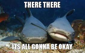 Memories of Shark Week...
