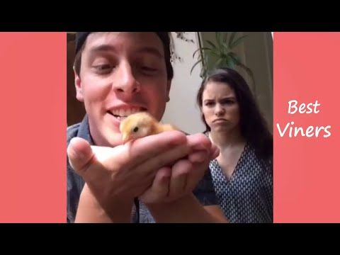 Thomas Sanders NEW Vines 2015 - Vine compilation - Best Viners - YouTube