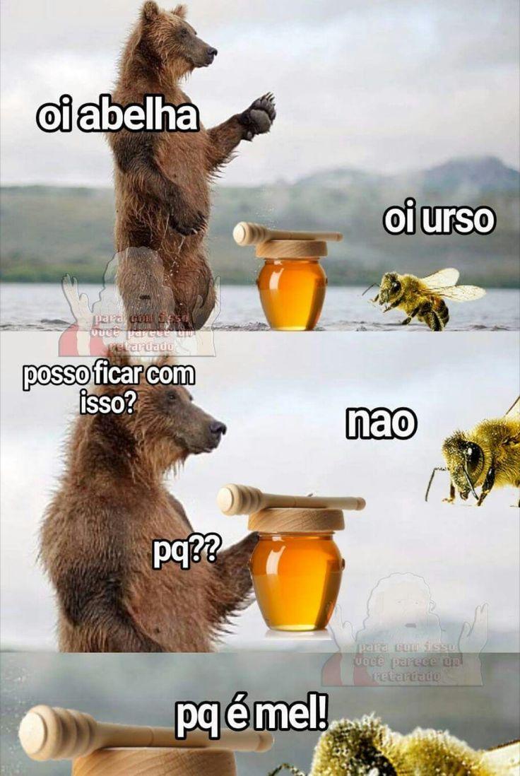 Urso Vs Abelha