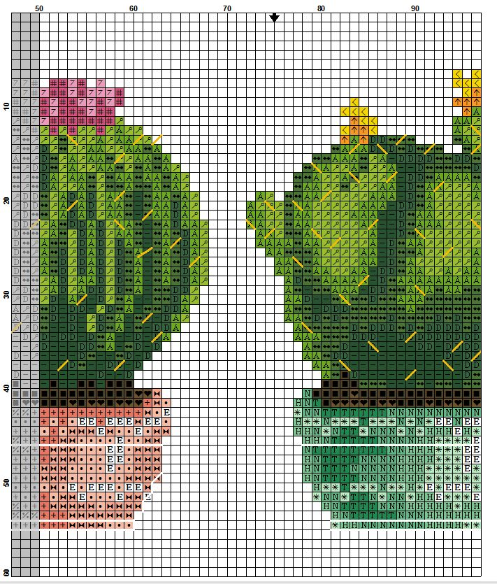 kaktusy hh 4