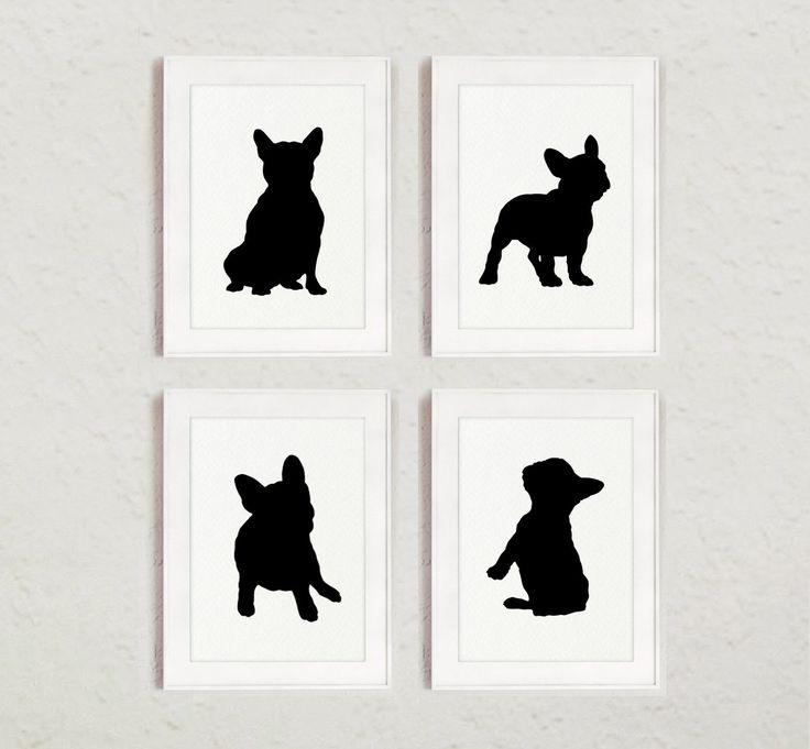 Dog Wall Decor best 25+ dog room decor ideas on pinterest | dog love, dog corner