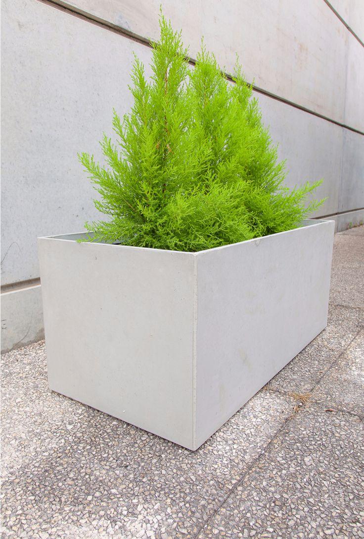 ... béton rectangulaire de design contemporain pour le jardin moderne