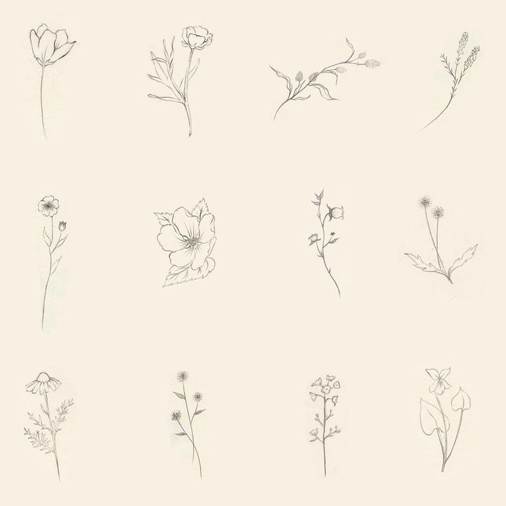 Wildflowers - for smaller, more delicate work                              …