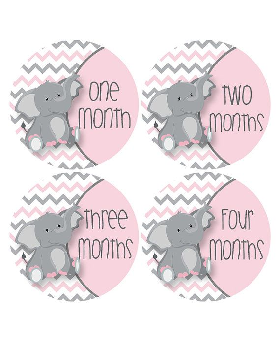 Place the adorable pink and gray elephant infant stickers on your baby girl's bodysuit, onesie or shirt prior to taking your photos. You can