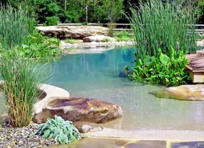 """This is so beautiful, I think it qualifies as """"pool art"""".   Natural Swimming Pools Don't Need No Chemicals via @PureWow"""