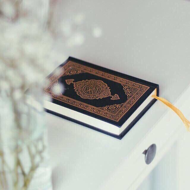 What's your current relationship status with the Quran?