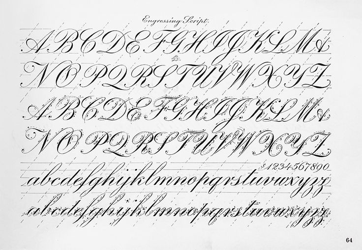 16 Best Calligraphy Pointed Pen Inspiration Exemplars