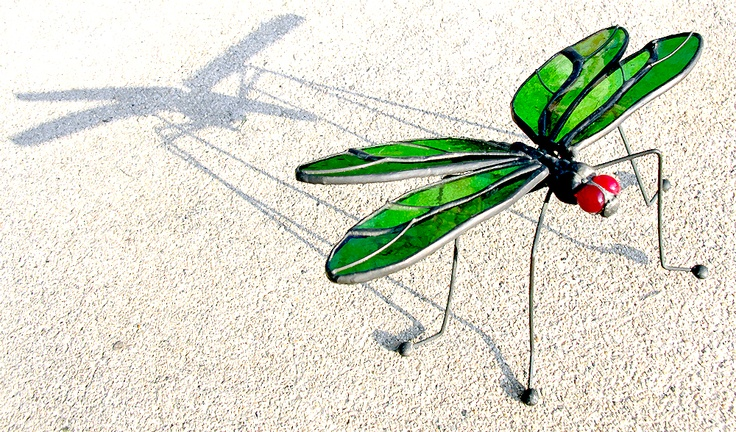 My little thrift store stained glass dragonfly...  Photo by Mark W. Patterson