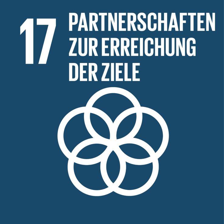 Partnerschaften und Erreichung der Ziele - Bibliothek 2030