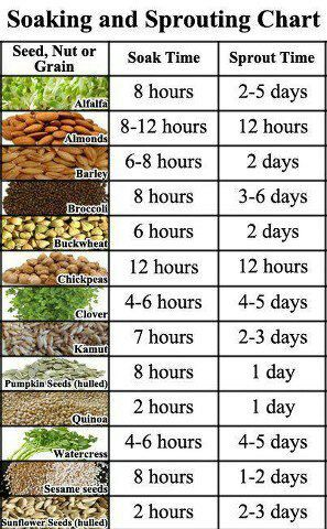 Soaking & Sprouting Chart