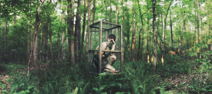 Habitat, restricted. | Flickr - Photo Sharing!